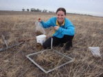 Louise Fisk sampling in Western Australia