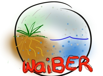 Charlotte waiber logo draft