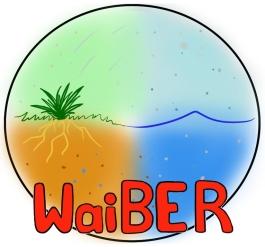 waiber logo v2